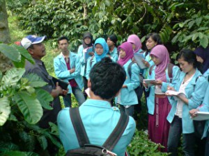 VISITING COFFEE AND TEA INDUSTRY